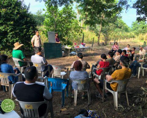 Fotografía: Ecolocos Autlán.